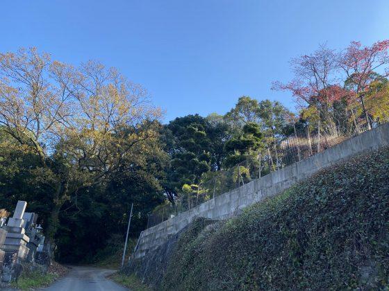 万日山緑地公園